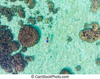 turista, archipiélago, coral, tropical, mar, cima, parque, ...