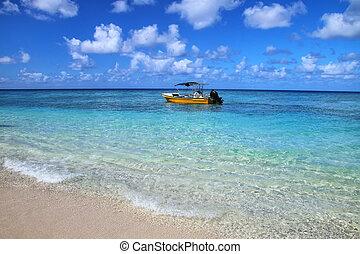 turista, barca, ancorato, a, davvero, isola, in, ouvea, laguna, lealtà, isole, nuova caledonia