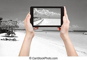 turista, foto, presa, oceano, atlantico, linea costiera