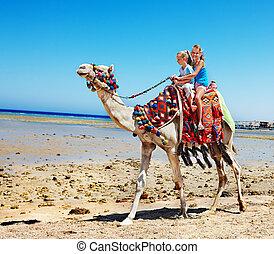 turistas, playa, egypt., equitación, camello