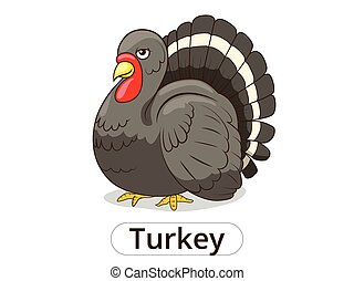 Turkey animal cartoon illustration for children