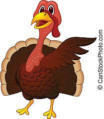 Turkey cartoon presenting