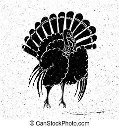 Turkey hand drawn