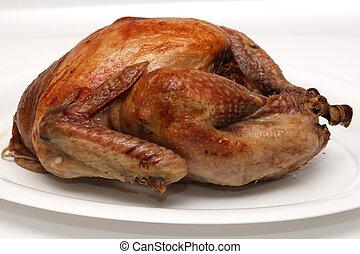 Turkey - Owen roasted turkey on a white plate. Shallow...