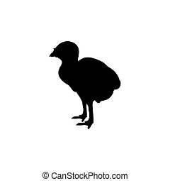 Turkey poult bird black silhouette animal.