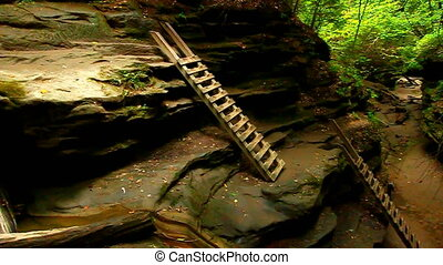 Turkey Run State Park Bear Hollow - Ladders ascend a steep...