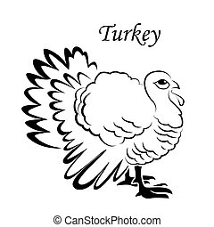 Turkey sketch icon for web, mobile and infographics. Hand drawn turkey icon. Turkey vector icon. T