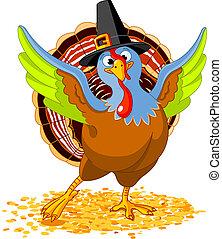 turkiet, tacksägelse, lycklig