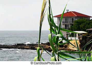 Turkish coast Mediterranean Sea