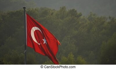 Turkish flag blowing in the wind over green trees - Turkish...
