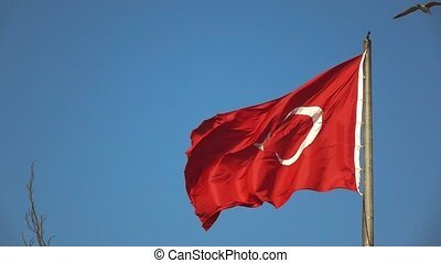 Turkish flag fluttering in the wind in the blue sky....