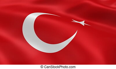 Turkish flag in the wind. Part of a series.