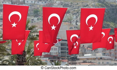 Turkish flags in the wind