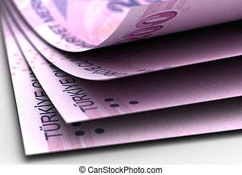Turkish Lira Close-Up (High Resolution computer generated image)
