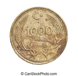 Turkish lira coin on a white background