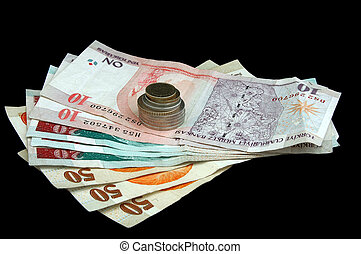 Turkish Lira - notes and coins