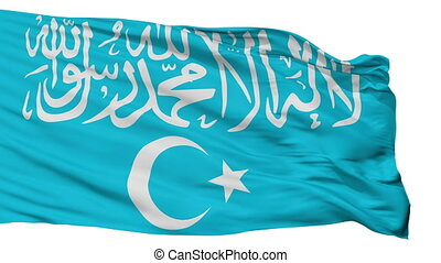 Turkistan Islamic Party Flag Isolated Seamless Loop - ...