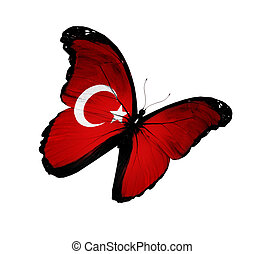 turkse dundoek, vlinder, vliegen, vrijstaand, op wit,...