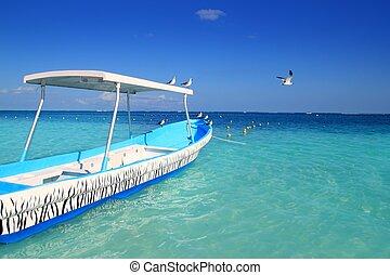 turkus, łódka, seagulls, błękitny, karaibskie morze
