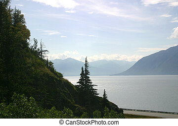 Turnagain Arm is home to Beluga whales outside of Anchorage,...