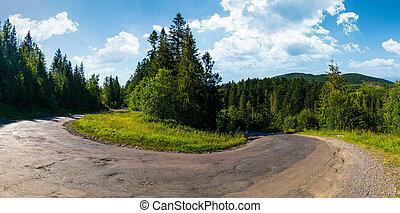 turnaround on serpentine road in forest