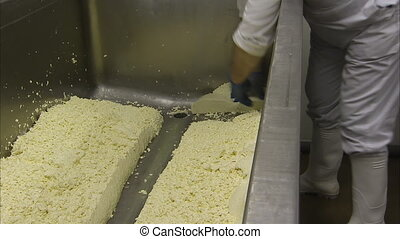 Turning big cheese blocks - A medium shot of a worker...
