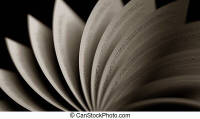 Turning old book pages, close-up. Seamless loop - Turning...