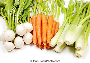 Turnip, carrot and celery from garden on white background