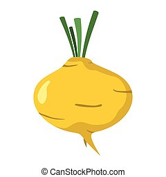 Turnip icon in cartoon flat style isolated object vegetable organic eco bio product from the farm vector illustration