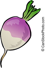 turnip illustrations and clip art 1 266 turnip royalty free rh canstockphoto com tulip outline clip art turnip clipart