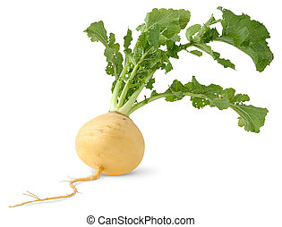 Turnip with leaves isolated over white