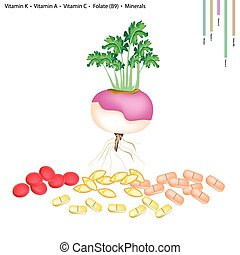 Turnip with Vitamin K, A, C and B9