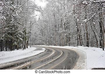 turno, strada, inverno, zona, foresta
