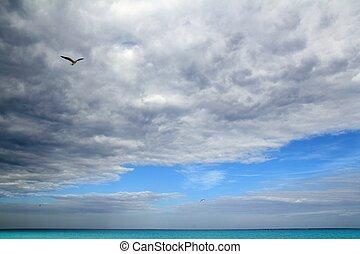 turquesa, caraíbas, céu, nublado, dramático, mar