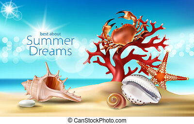 turquesa, fundo, com, verão, praia arenosa, seashells, seixos, starfish, carangueijo, e, coral