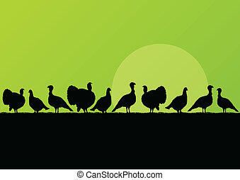 turquie, chasse, campagne, saison, illustration, silhouettes, vecteur, fond, sauvage, paysage