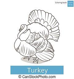 turquie, coloration, vecteur, livre, apprendre, oiseaux