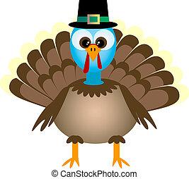 turquie, dessin animé, thanksgiving