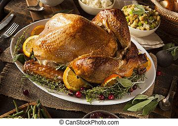 turquie, entier, thanksgiving, fait maison