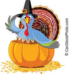 turquie, thanksgiving, pumpki