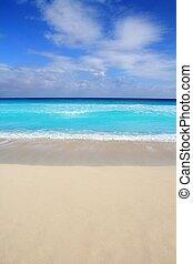 turquoise, antilles, vertical, exotique, mer, plage