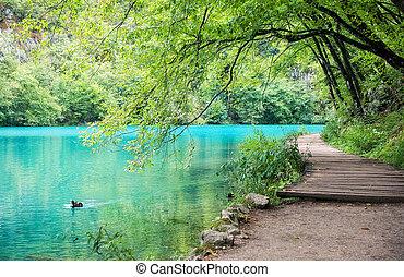 turquoise, eau lac