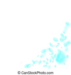 Turquoise flower petals falling down. Flawless romantic ...