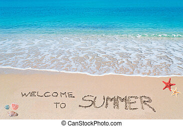 "turquoise water and golden sand with ""welcome to summer"" written on it"