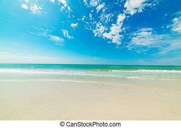 Turquoise water and white sand in beautiful Venice beach