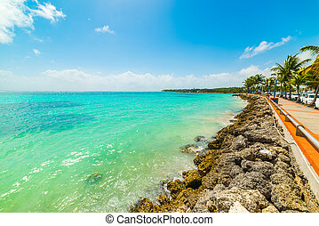 Turquoise water in Sainte Anne shore in Guadeloupe, French west indies. Lesser Antilles, Caribbean sea