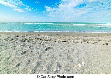 Turquoise water in Siesta Key beach