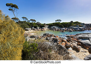 Turquoise waters with orange lichen growing on granite...