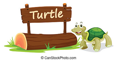 turtle and name plate - illustration of turtle and name...