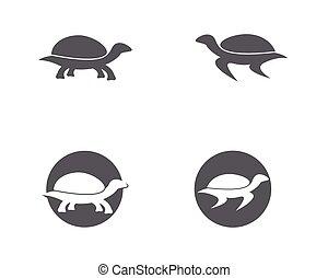 turtle animal cartoon icon image illustration - Turtle...